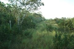 Western-border-of-Honey-Camp-NP